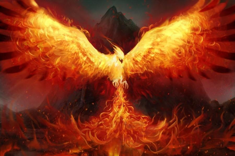 http://unveiledmiracles.com/wp-content/uploads/2015/09/Phoenix-5.jpg